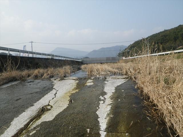 箕田の川-2
