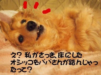 写真4669(№453)1