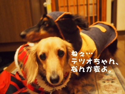 写真4676(№454)1