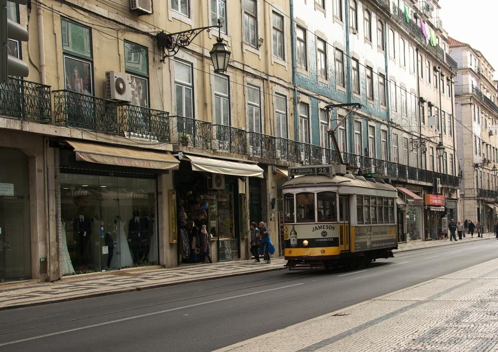 公共交通 (6)