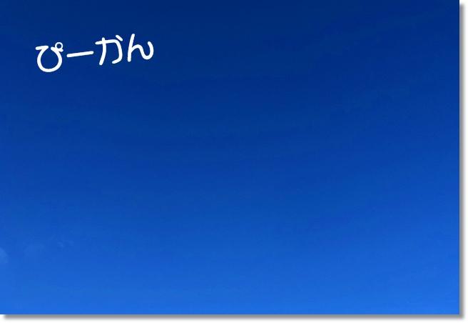 IMG_F1050.jpg