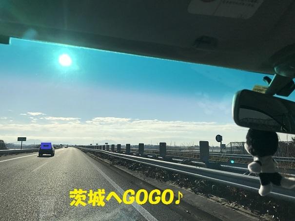 IMG_7685_201712211953520e5.jpg