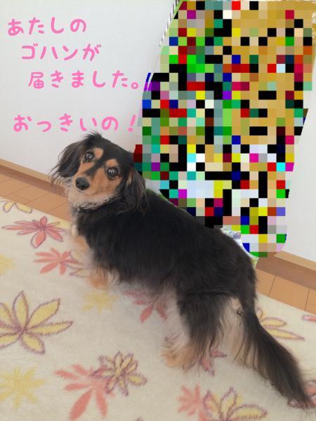 027_convert_20180103162651.jpg
