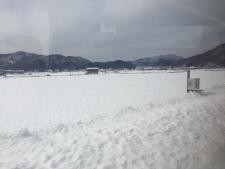 しらさぎから見えた雪原