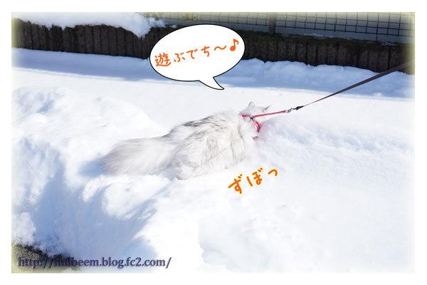 rayyukiasobi04.jpg