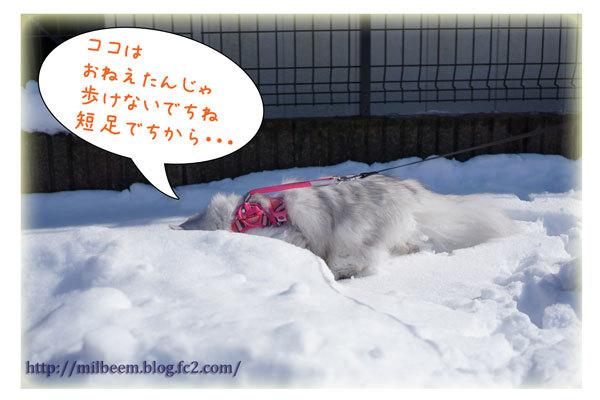 rayyukiasobi08.jpg