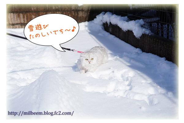 rayyukiasobi09.jpg