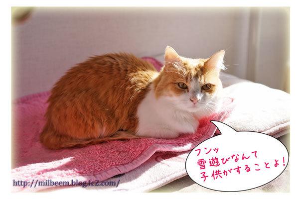 rayyukiasobi14.jpg