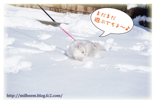 rayyukiasobi15.jpg