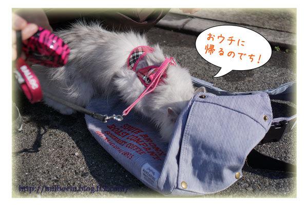 rayyukiasobi22.jpg