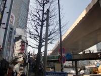 一番館@渋谷・20180207・渋谷線