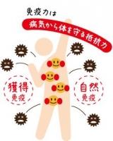 免疫力を高めて健康的な体を