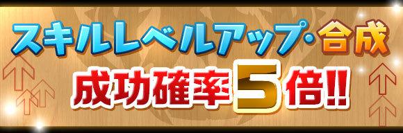 skill_seikou5x_20180105153318d72.jpg