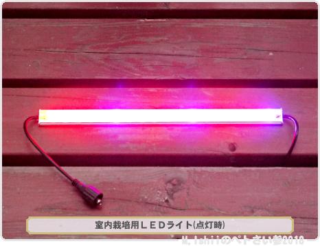 室内栽培用LEDライト04