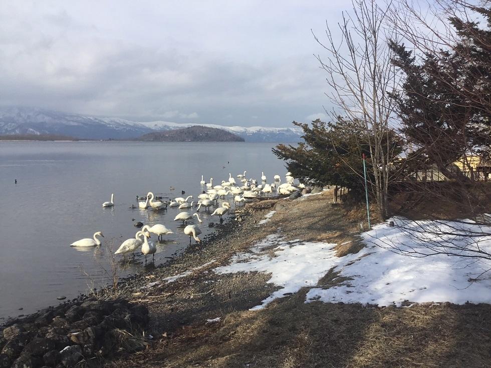 1月18日 北海道2