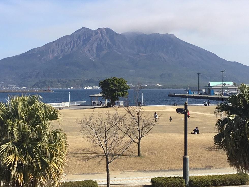 1月 桜島