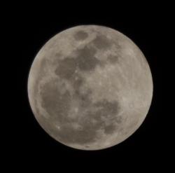 20180131皆既月食01