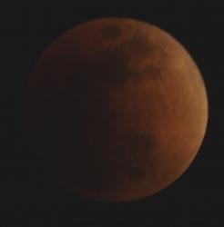 20180131皆既月食09