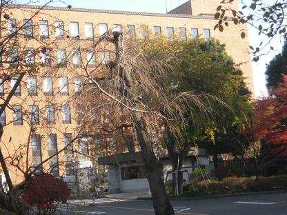 21 大学本館
