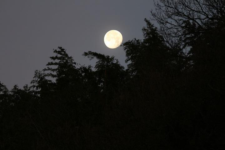 西の空にはお月様 30 1 4