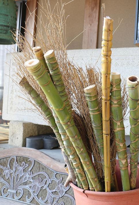 爺神山にホテイチクの杖 30 1 22