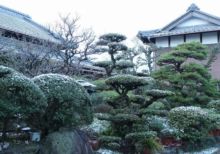 朝起きたら 雪 30 2 13