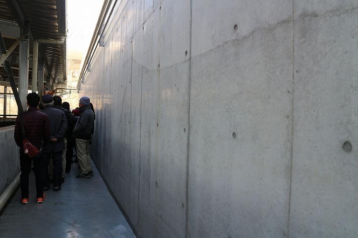 後ろの壁は暖かい 微生物が働いてる 30 2 14