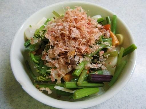 171230-231山菜おろし(S)