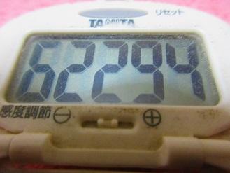 180102-291歩数計(S)