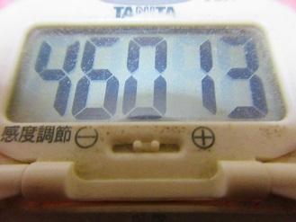 180106-291歩数計(S)