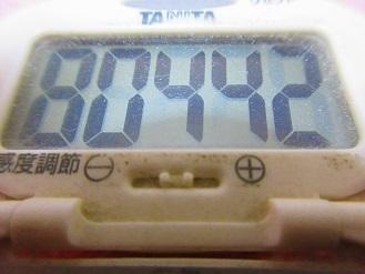180107-291歩数計(S)