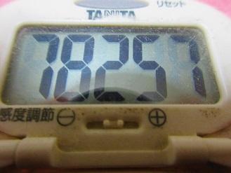 180114-291歩数計(S)
