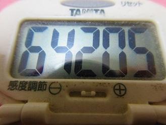 180121-291歩数計(S)