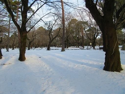 180128-202雪景色(S)