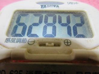 180128-291歩数計(S)