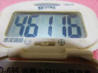 180210-291歩数計(1)