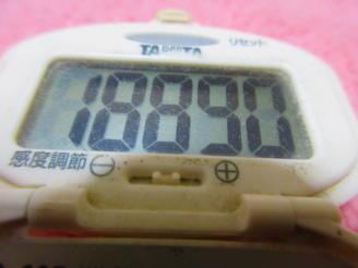 180212-291歩数計(1)