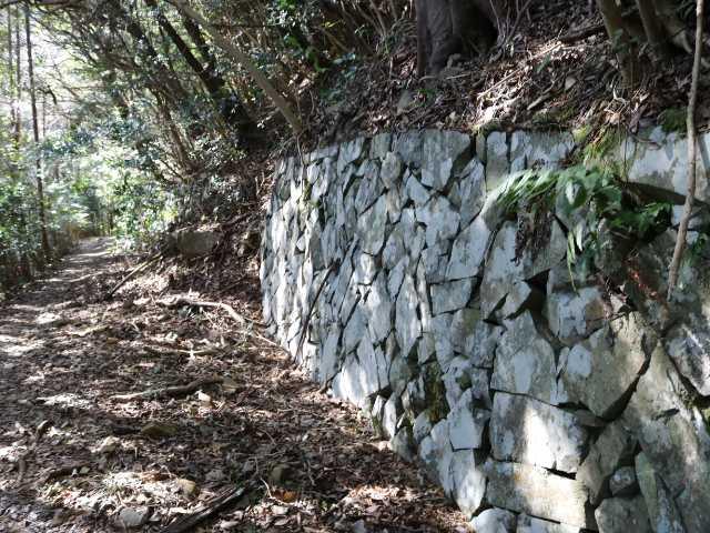IMG6661JPG高蔵山堡塁跡への道