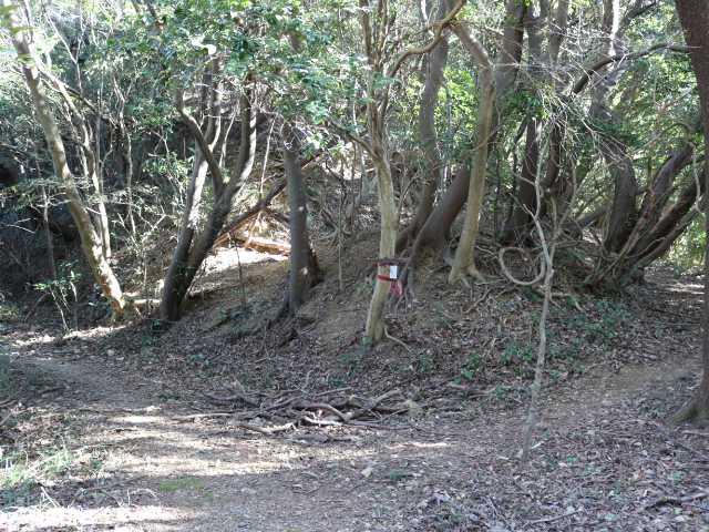 IMG6673JPG右は山頂へ左は堡塁跡へ