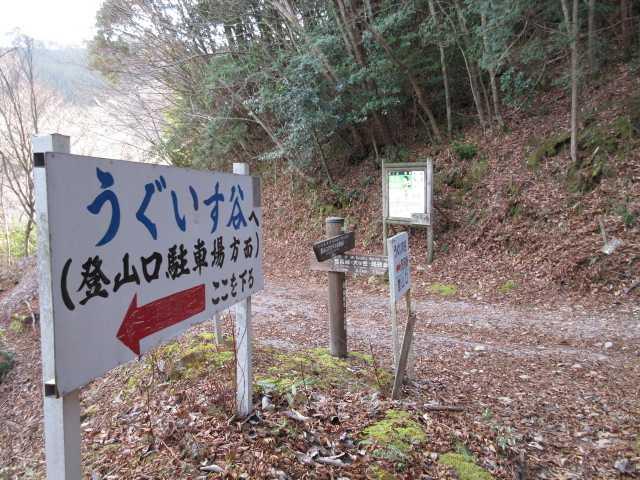 IMG2973JPG経読林道に出た
