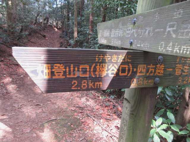 IMG3136JPG尺岳の肩