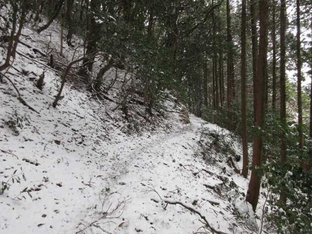 IMG3181JPG雪道になる