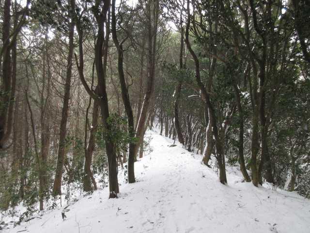 IMG3197JPG雪の尾根