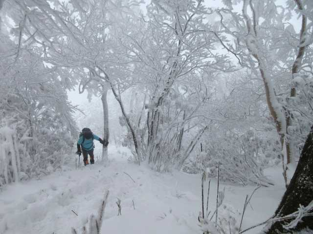 IMG3290JPG南岳への急登