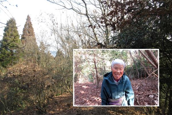 page川崎エミ子さん 87歳 H28 11 20で2万回達成