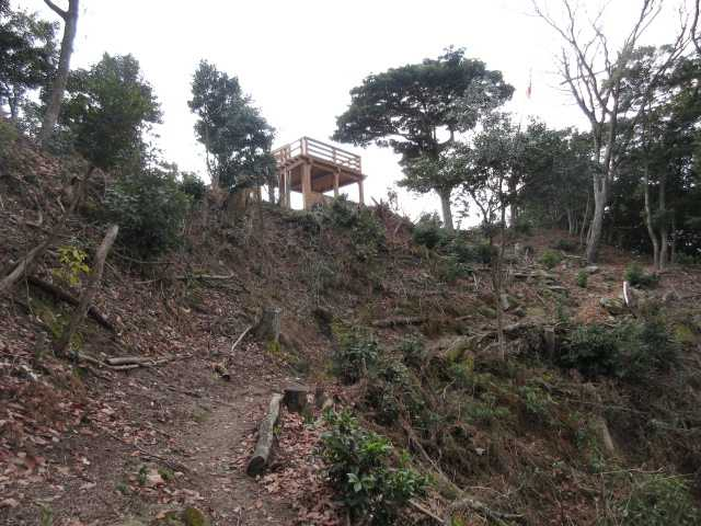 IMG3596JPG伐採された山頂北