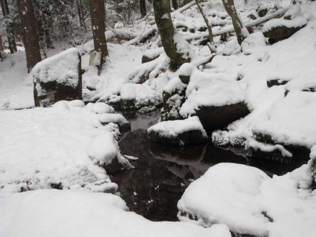 IMG3910JPG冠雪の衣ケ池