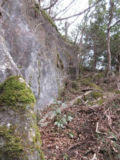 IMG143JPG大岩を巻く