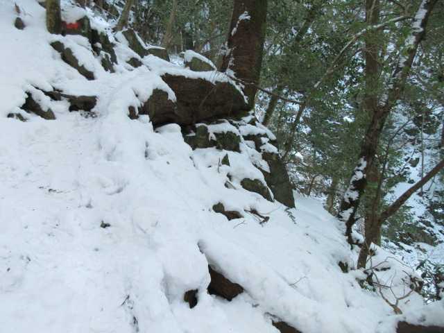 IMG4251JPG積雪の筑豊新道