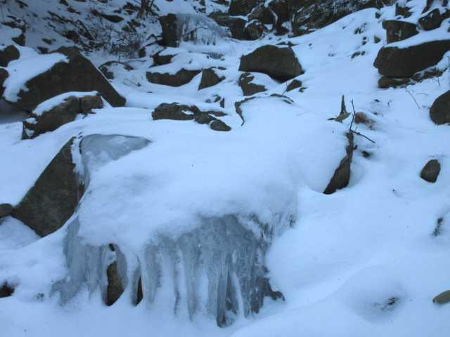 IMG4266JPG氷結